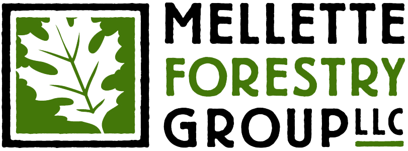 Mellette Forestry Group, LLC